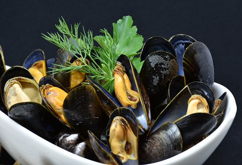 mussels-3148429__340